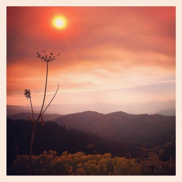 Smokey day. Photo credit: Stephen Wassather