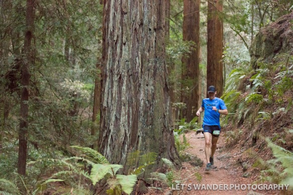 Inside Trail Racing Mt. Tam 30k (11/14). Photo Credit: http://www.letswanderphotography.com/